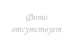 Силиконовый чехол Samsung Galaxy Note 10 (SM-N970) Черный}